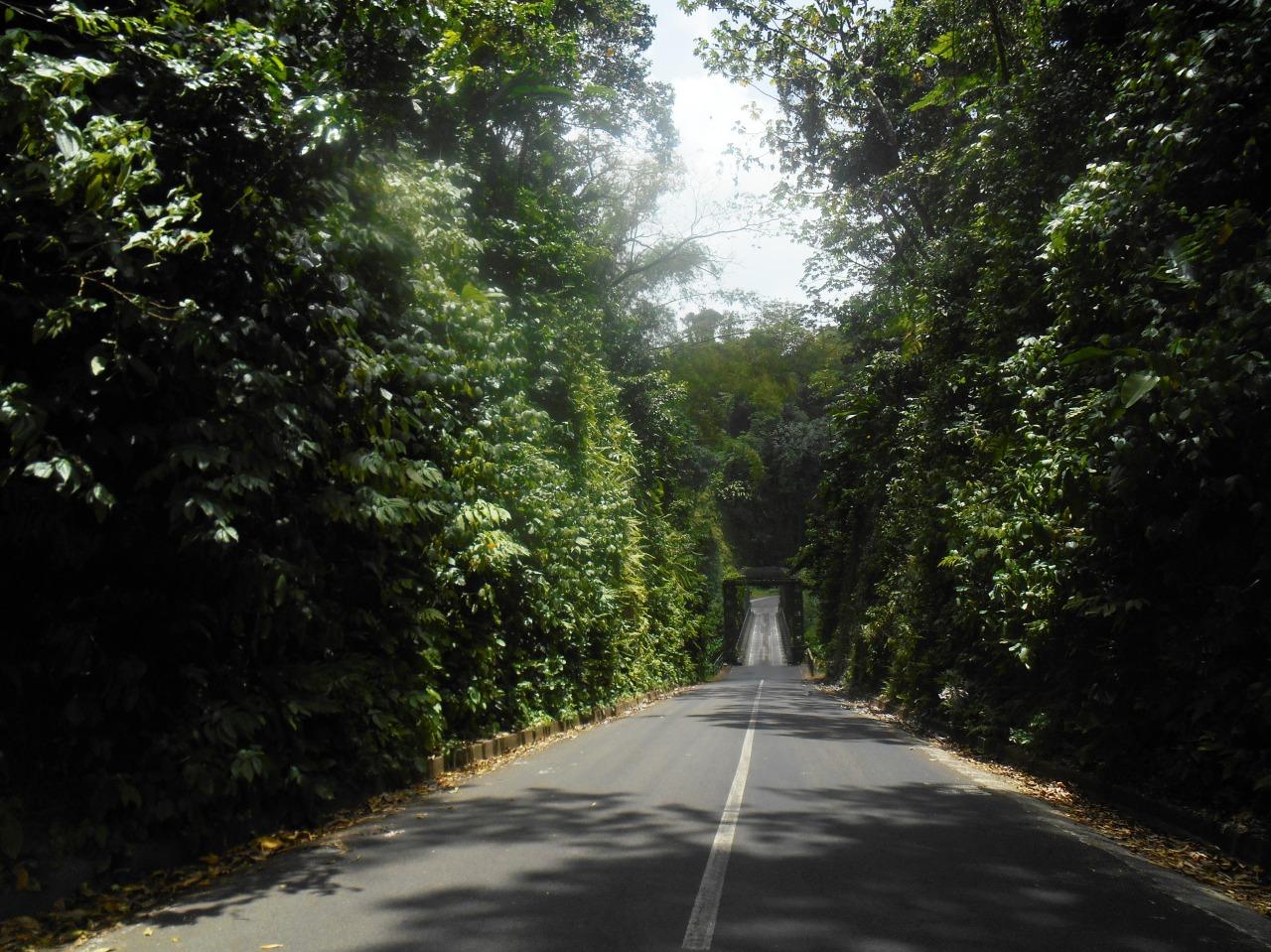 Conduire en Martinique, ou s'adapter ou mourir!
