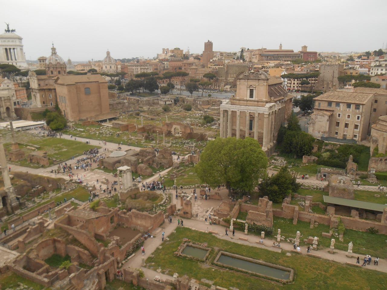 forum-romain.jpg