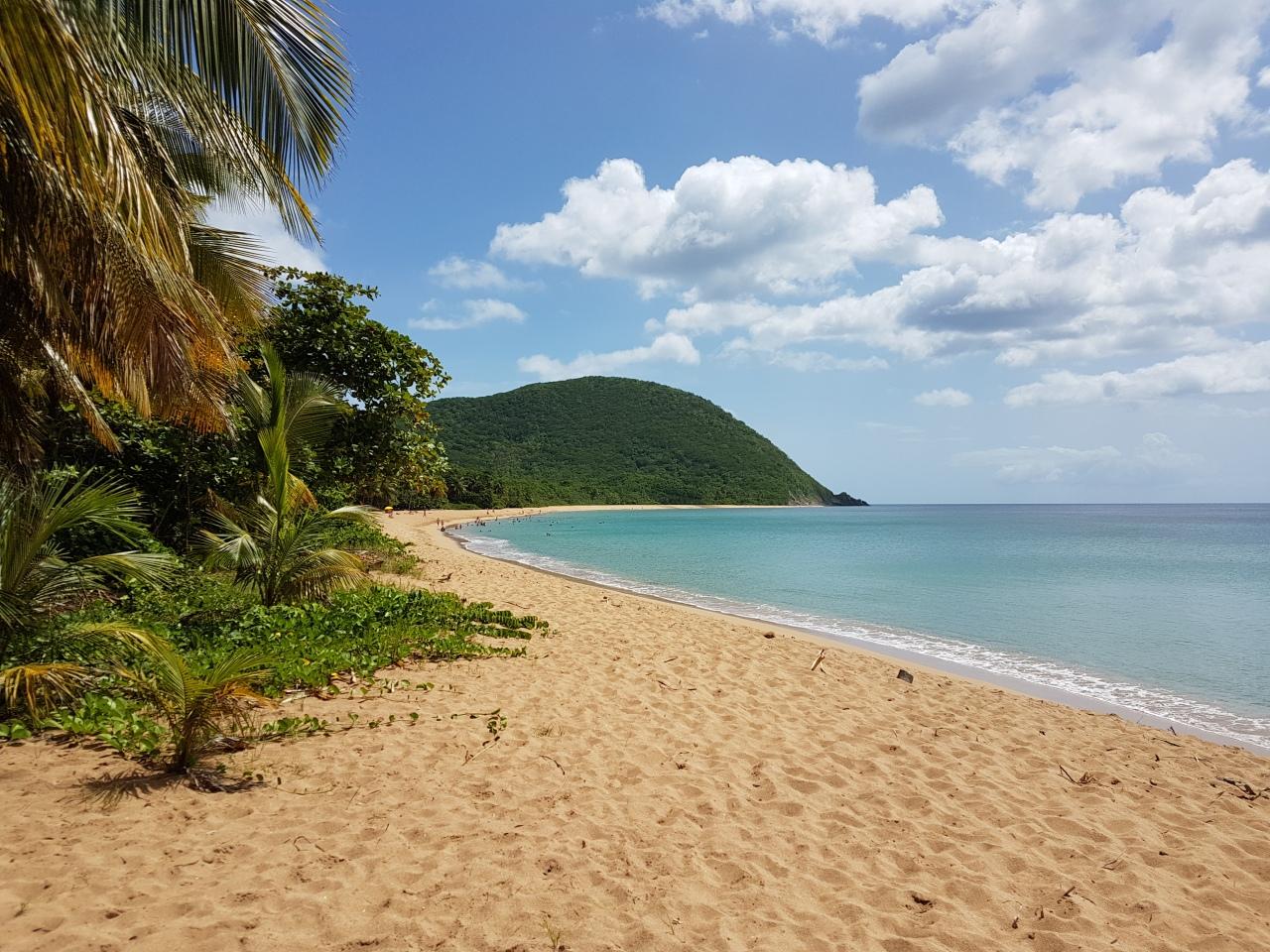 Un petit tour en Guadeloupe!